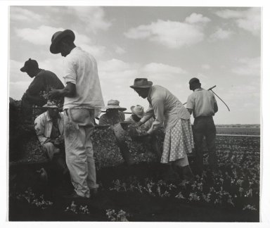 Consuelo Kanaga (American, 1894-1978). <em>[Untitled] (Muckworkers)</em>, 1950. Gelatin silver photograph, 6 1/2 x 7 5/8 in. (16.5 x 19.4 cm). Brooklyn Museum, Gift of Wallace B. Putnam from the Estate of Consuelo Kanaga, 82.65.357 (Photo: Brooklyn Museum, 82.65.357_PS2.jpg)