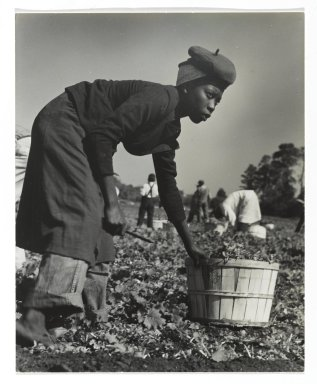 Consuelo Kanaga (American, 1894-1978). <em>[Untitled] (Muckworker)</em>. Gelatin silver photograph, 6 3/4 x 5 1/2 in. (17.1 x 14 cm). Brooklyn Museum, Gift of Wallace B. Putnam from the Estate of Consuelo Kanaga, 82.65.358 (Photo: Brooklyn Museum, 82.65.358_PS2.jpg)