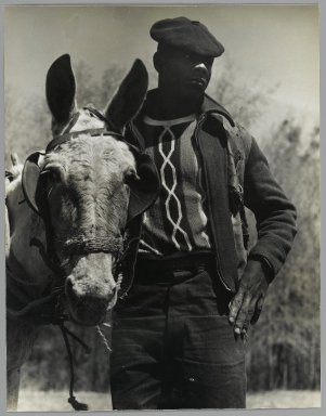 Consuelo Kanaga (American, 1894-1978). <em>[Untitled] (Farmer and Mule, Florida)</em>, 1950. Gelatin silver photograph, 9 7/8 x 7 5/8 in. (25.1 x 19.4 cm). Brooklyn Museum, Gift of Wallace B. Putnam from the Estate of Consuelo Kanaga, 82.65.391 (Photo: Brooklyn Museum, 82.65.391_PS2.jpg)