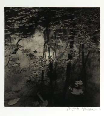 Consuelo Kanaga (American, 1894-1978). <em>[Untitled] (Leaves on Pond)</em>. Gelatin silver photograph, Image: 8 x 7 7/8 in. (20.3 x 20 cm). Brooklyn Museum, Gift of Wallace B. Putnam from the Estate of Consuelo Kanaga, 82.65.408 (Photo: Brooklyn Museum, 82.65.408_PS2.jpg)