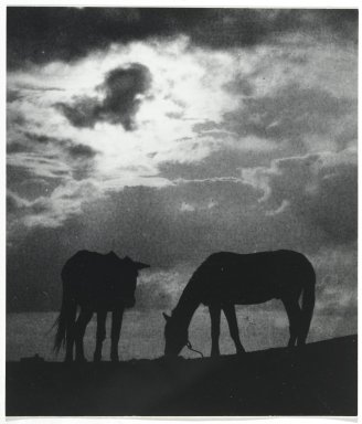Consuelo Kanaga (American, 1894-1978). <em>[Untitled] (Horses)</em>. Gelatin silver photograph, 6 3/8 x 5 1/2 in. (16.2 x 14 cm). Brooklyn Museum, Gift of Wallace B. Putnam from the Estate of Consuelo Kanaga, 82.65.419 (Photo: Brooklyn Museum, 82.65.419_PS2.jpg)