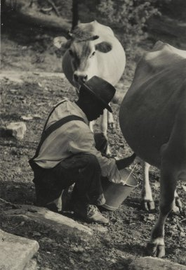Consuelo Kanaga (American, 1894-1978). <em>[Untitled] (Milking Cow, Tennessee)</em>. Gelatin silver photograph, 4 7/8 x 3 3/8 in. (12.4 x 8.6 cm). Brooklyn Museum, Gift of Wallace B. Putnam from the Estate of Consuelo Kanaga, 82.65.41 (Photo: Brooklyn Museum, 82.65.41_PS2.jpg)