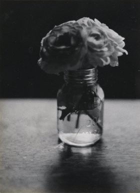 Consuelo Kanaga (American, 1894-1978). <em>[Untitled] (Flowers in Water)</em>. Gelatin silver photograph, 4 1/2 x 3 1/4 in. (11.4 x 8.3 cm). Brooklyn Museum, Gift of Wallace B. Putnam from the Estate of Consuelo Kanaga, 82.65.435 (Photo: Brooklyn Museum, 82.65.435_PS2.jpg)