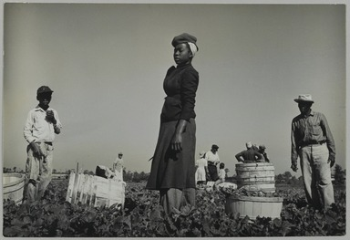 Consuelo Kanaga (American, 1894-1978). <em>Florida Farm Workers</em>, 1950. Gelatin silver photograph, 6 3/4 x 10 in. (17.1 x 25.4 cm). Brooklyn Museum, Gift of Wallace B. Putnam from the Estate of Consuelo Kanaga, 82.65.458 (Photo: Brooklyn Museum, 82.65.458_PS2.jpg)