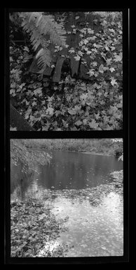 Consuelo Kanaga (American, 1894-1978). <em>[Untitled]</em>. Safety Negative, 5 x 2 1/4 in. (12.7 x 5.7 cm). Brooklyn Museum, Gift of Wallace B. Putnam from the Estate of Consuelo Kanaga, 82.65.497 (Photo: Brooklyn Museum, 82.65.497.jpg)