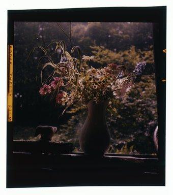 Consuelo Kanaga (American, 1894-1978). <em>[Untitled]</em>. Negative, 2 1/4 x 2 1/4 in. (5.7 x 5.7 cm). Brooklyn Museum, Gift of Wallace B. Putnam from the Estate of Consuelo Kanaga, 82.65.613 (Photo: Brooklyn Museum, 82.65.613.jpg)