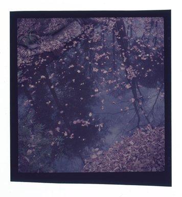 Consuelo Kanaga (American, 1894-1978). <em>[Untitled]</em>. Negative, 2 1/4 x 2 1/4 in. (5.7 x 5.7 cm). Brooklyn Museum, Gift of Wallace B. Putnam from the Estate of Consuelo Kanaga, 82.65.641 (Photo: Brooklyn Museum, 82.65.641.jpg)