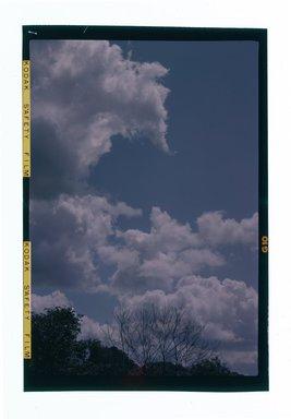 Consuelo Kanaga (American, 1894-1978). <em>[Untitled]</em>. Negative, 2 1/4 x 3 1/4 in. (5.7 x 8.3 cm). Brooklyn Museum, Gift of Wallace B. Putnam from the Estate of Consuelo Kanaga, 82.65.659 (Photo: Brooklyn Museum, 82.65.659.jpg)
