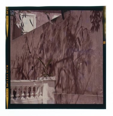 Consuelo Kanaga (American, 1894-1978). <em>[Untitled]</em>. Negative, 2 1/4 x 2 1/4 in. (5.7 x 5.7 cm). Brooklyn Museum, Gift of Wallace B. Putnam from the Estate of Consuelo Kanaga, 82.65.669 (Photo: Brooklyn Museum, 82.65.669.jpg)