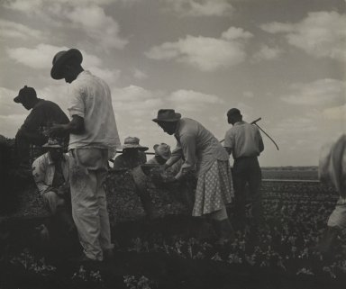 Consuelo Kanaga (American, 1894-1978). <em>[Untitled] (Workers in Tennessee)</em>, 1950. Gelatin silver photograph, 6 7/8 x 8 1/4 in. (17.5 x 21 cm). Brooklyn Museum, Gift of Wallace B. Putnam from the Estate of Consuelo Kanaga, 82.65.92 (Photo: Brooklyn Museum, 82.65.92_PS2.jpg)