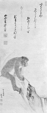 Maruyama Okyo (Japanese, 1733-1795). <em>Monkey</em>, 1773. Hanging scroll, ink and light color on paper, 72 x 20 3/8 in. (182.9 x 51.8 cm). Brooklyn Museum, Gift of Dr. Kenneth Rosenbaum, 83.191.4 (Photo: Brooklyn Museum, 83.191.4_bw_IMLS.jpg)