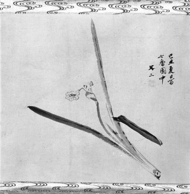 Tani Bunji (Japanese, died 1850). <em>Narcissus</em>, 19th century. Hangin scroll painting, ink on paper, 15 1/8 x 17 1/8 in. (38.4 x 43.5 cm). Brooklyn Museum, Gift of Dr. Kenneth Rosenbaum, 84.203.2 (Photo: Brooklyn Museum, 84.203.2_bw_IMLS.jpg)