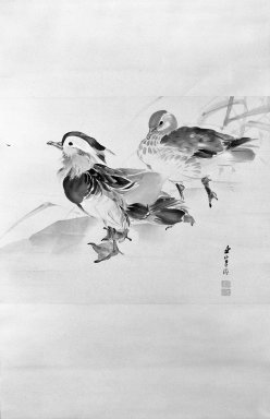 Kishi Renzan (Japanese, 1805-1859). <em>Pair of Mandarin Ducks</em>, 19th century. Hanging scroll painting; ink and light color on paper, 45 1/2 x 21 1/4 in. (115.6 x 54 cm). Brooklyn Museum, Gift of Dr. Kenneth Rosenbaum, 84.203.7 (Photo: Brooklyn Museum, 84.203.7_bw_IMLS.jpg)