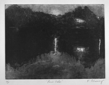 Katie O'Looney. <em>Pine Lake</em>, 1983. Aquatint on paper, sheet: 15 1/16 x 20 1/8 in. (38.3 x 51.1 cm). Brooklyn Museum, Gift of the Printmaking Workshop in honor of Una E. Johnson, 84.307.9. © artist or artist's estate (Photo: Brooklyn Museum, 84.307.9_bw.jpg)
