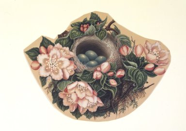 H. Lynde. <em>Bird's Nest</em>, 1862. Watercolor on paper Brooklyn Museum, Purchased with funds given by Mr. and Mrs. Leonard L. Milberg, 85.178.4 (Photo: Brooklyn Museum, 85.178.4.jpg)