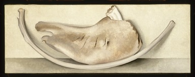Georgia O'Keeffe (American, 1887-1986). <em>Rib and Jawbone (recto) and Tulip (verso)</em>, 1935 (recto); ca. 1926 (verso). Oil on canvas, 9 x 24 in.  (22.9 x 61.0 cm). Brooklyn Museum, Bequest of Georgia O'Keeffe, 87.136.5a-b. © artist or artist's estate (Photo: Brooklyn Museum, 87.136.5a-b_recto_SL1.jpg)