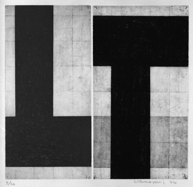 "Carole Seborovski (American, born 1960). <em>Two ""T"" Shapes</em>, 1986. Aquatint gravure on paper, sheet: 16 1/2 x 16 in. (41.9 x 40.6 cm). Brooklyn Museum, Purchase gift of Werner H. Kramarsky, 87.55.3. © artist or artist's estate (Photo: Brooklyn Museum, 87.55.3_bw.jpg)"