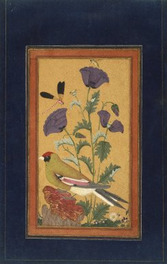 Indian. <em>Finch, Poppies, Dragonfly, and Bee</em>, 1650-1670. Opaque watercolor and gold on paper, sheet: 11 1/2 x 7 3/4 in.  (29.2 x 19.7 cm). Brooklyn Museum, Ella C. Woodward Memorial Fund, 87.85 (Photo: Brooklyn Museum, 87.85_IMLS_SL2.jpg)