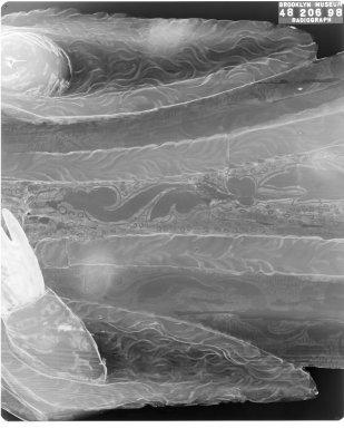 Unknown. <em>Saint Joseph</em>. Wood, 39 x 16 x 4 in. Brooklyn Museum, Frank L. Babbott Fund, Frank Sherman Benson Fund, Carll H. de Silver Fund, A. Augustus Healy Fund, Caroline A.L. Pratt Fund, Charles Stewart Smith Memorial Fund, and Ella C. Woodward Memorial Fund, 48.206.98. Creative Commons-BY (Photo: Brooklyn Museum, CONS.48.206.98_1994_xrs_detail01.jpg)