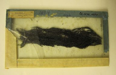 <em>Black Plant-like Thread Mounted Under Glass</em>. Fiber, Threads: 1 1/2 × 5 5/16 in. (3.8 × 13.5 cm). Brooklyn Museum, Special Improvement Fund, 01.1536.1694. Creative Commons-BY (Photo: , CUR.01.1536.1694.jpg)