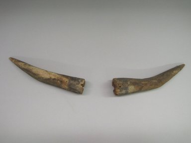 Hopi Pueblo. <em>Pair of Horns Worn by Shalako</em>. Wood, 1 3/8 × 1 1/2 × 8 1/4 in. (3.5 × 3.8 × 21 cm). Brooklyn Museum, Museum Expedition 1904, Museum Collection Fund, 04.297.5612. Creative Commons-BY (Photo: , CUR.04.297.5612.jpg)