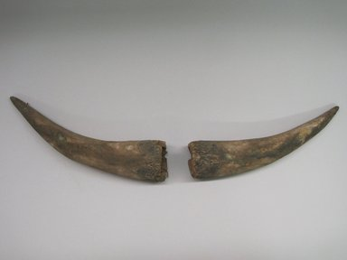 Hopi Pueblo. <em>Pair of Horns Worn by Shalako</em>. Wood, 2 3/8 × 2 5/8 × 10 3/4 in. (6 × 6.7 × 27.3 cm). Brooklyn Museum, Museum Expedition 1904, Museum Collection Fund, 04.297.5613. Creative Commons-BY (Photo: , CUR.04.297.5613.jpg)