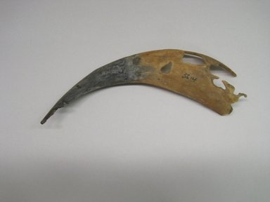 Ancestral Hopi Pueblo. <em>Horn Worn by Shalako</em>. Horn, 2 1/2 × 1 1/8 × 8 3/8 in. (6.4 × 2.9 × 21.3 cm). Brooklyn Museum, Museum Expedition 1904, Museum Collection Fund, 04.297.5614. Creative Commons-BY (Photo: Brooklyn Museum, CUR.04.297.5614.jpg)