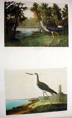 John James  Audubon (American, born Haiti, 1785-1851). <em>Yellow Shank and Green Shank</em>, 1861. Chromolithograph Brooklyn Museum, Gift of Seymour R. Husted Jr., 06.339.44a-b (Photo: Brooklyn Museum, CUR.06.339.44a-b.jpg)