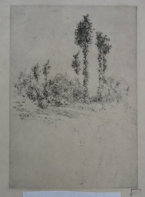 Robert Frederick Blum (American, 1857-1903). <em>Landscape with Trees</em>, n.d. Etching on cream-colored wove paper, sheet: 18 7/8 x 12 9/16 in. (47.9 x 31.9 cm). Brooklyn Museum, Gift of the Cincinnati Museum Association, 11.588 (Photo: Brooklyn Museum, CUR.11.588.jpg)
