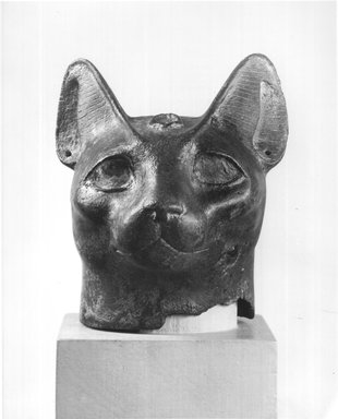 <em>Head of a Cat</em>. Bronze, 3 3/4 x 3 5/16 x 2 1/2 in. (9.5 x 8.4 x 6.3 cm). Brooklyn Museum, Gift of Evangeline Wilbour Blashfield, Theodora Wilbour, and Victor Wilbour honoring the wishes of their mother, Charlotte Beebe Wilbour, as a memorial to their father, Charles Edwin Wilbour, 16.85. Creative Commons-BY (Photo: Brooklyn Museum, CUR.16.85_NegA_print_bw.jpg)