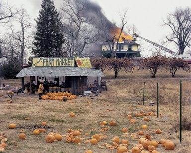 Joel Sternfeld (American, born 1944). <em>The Farm Market, McLean, Virginia, December 1978</em>, n.d. Dye transfer print on photographic paper, 14 15/16 x 19 5/16 in. Brooklyn Museum, Gift of Selma and Leonard Zoref, 1989.128.3. © artist or artist's estate (Photo: Image courtesy of Luhring Augustine, CUR.1989.128.3_Luhring_Augustine_photo.jpg)