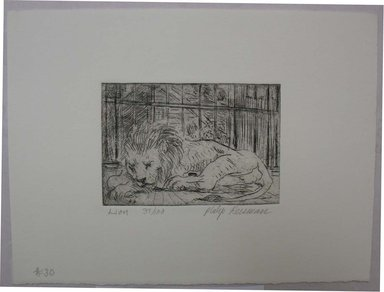 Philip Reisman (American, 1904-1992). <em>Lion</em>, 1927-1934. Etching on paper, sheet: 6 5/8 x 9 in. (16.9 x 22.8 cm). Brooklyn Museum, Gift of Louise Reisman, 1993.39.30. © artist or artist's estate (Photo: Brooklyn Museum, CUR.1993.39.30.jpg)