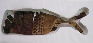 Ullujalla/Palpa. <em>Belt?, Fragment</em>, 1400-1532. Cotton, camelid fiber, 18 3/4 × 5 1/2 in. (47.6 × 14 cm). Brooklyn Museum, Gift of Kay Hodnett Nunez, 1995.47.91. Creative Commons-BY (Photo: , CUR.1995.47.91.jpg)