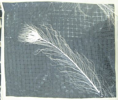 Aviva Stanoff (American, born 1972). <em>Fossilized Peacock</em>, 2002. Ultrasuede and deer netting with albino peacock, 19 1/4 x 17 1/8 in. (48.9 x 43.5 cm). Brooklyn Museum, Gift of the artist in memory of David Pichler , 2011.19.8. © artist or artist's estate (Photo: Brooklyn Museum, CUR.2011.19.8.jpg)