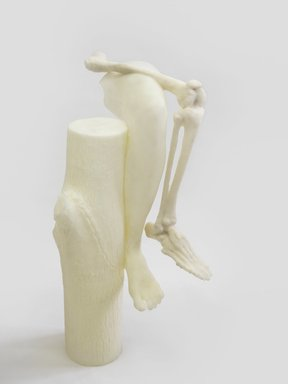 Janine Antoni (Bahamian, born 1964). <em>to compose</em>, 2015. Polyurethane resin, 34 x 26 x 26 in. (86.4 x 66 x 66 cm). Brooklyn Museum, Gift of the Contemporary Art Acquisitions Committee, 2015.55. © artist or artist's estate (Photo: Jose AndrTs Ramfrez, courtesy of the artist and  Luhring Augustine, New York, CUR.2015.55_Luhring_Augustine_image.jpg)