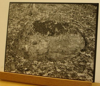 Stephen Shore (American, born 1947). <em>Luzzara, Italy</em>, 1991. Gelatin silver photograph, 10 × 8 in. (25.4 × 20.3 cm). Brooklyn Museum, Gift of The Carol and Arthur Goldberg Collection, 2016.18.14. © artist or artist's estate (Photo: , CUR.2016.18.14.jpg)