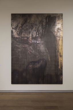 Michael Joo (American, born 1966). <em>Entasis (xylem)</em>, 2016. Silver nitrate and epoxy ink on canvas, 132 × 96 × 2 in. (335.3 × 243.8 × 5.1 cm). Brooklyn Museum, Gift of Ruth and William S. Ehrlich, 2017.11 (Photo: Image courtesy of Michael Joo Studio, CUR.2017.11_MichaelJooStudio_photograph.jpg)
