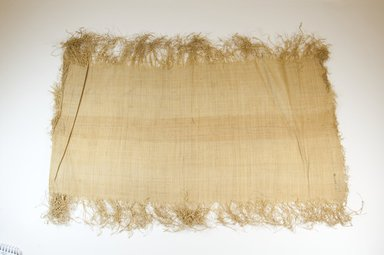 Possibly Kuba. <em>Raffia Cloth</em>, 19th century. Raffia, 24 3/4 x 10 1/2 in. (63.5 x 26.5 cm). Brooklyn Museum, Museum Expedition 1922, Robert B. Woodward Memorial Fund, 22.469.13. Creative Commons-BY (Photo: Brooklyn Museum, CUR.22.469.13_top_PS5.jpg)