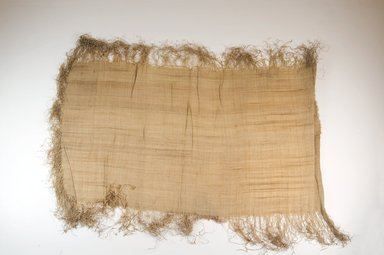 Possibly Kuba. <em>Raffia Cloth</em>, 19th century. Raffia, 24 5/8 x 13 3/8 in. (62.5 x 34.0 cm). Brooklyn Museum, Museum Expedition 1922, Robert B. Woodward Memorial Fund, 22.469.33. Creative Commons-BY (Photo: Brooklyn Museum, CUR.22.469.33_top_PS5.jpg)