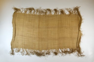 Possibly Kuba. <em>Raffia Cloth</em>, 19th century. Raffia, 25 3/8 x 13 3/8 in. (64.5 x 34.0 cm). Brooklyn Museum, Museum Expedition 1922, Robert B. Woodward Memorial Fund, 22.469.39. Creative Commons-BY (Photo: Brooklyn Museum, CUR.22.469.39_top_PS5.jpg)