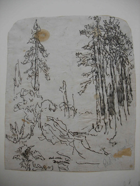 Ralph Albert Blakelock (American, 1847-1919). <em>Redwoods</em>, ca. 1869-1871. Pen and ink over graphite on paper affixed to support paper, Sheet (irregular): 11 7/16 x 9 3/8 in. (29.1 x 23.8 cm). Brooklyn Museum, Gift of Mr. and Mrs. E. Le Grand Beers in memory of Edwin Beers, 27.19 (Photo: , CUR.27.19.jpg)