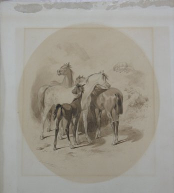 Felix Octavius Carr Darley (American, 1822-1888). <em>Horses</em>, n.d. Graphite and ink wash on heavy paper, Sheet: 17 x 14 5/8 in. (43.2 x 37.1 cm). Brooklyn Museum, Frederick Loeser Fund, 28.214 (Photo: Brooklyn Museum, CUR.28.214.jpg)