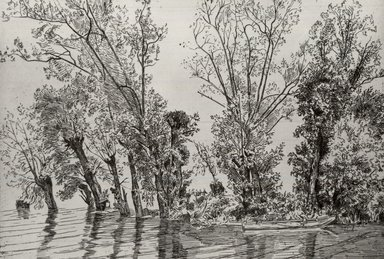 Félix Bracquemond (French, 1833-1914). <em>The Willows at Mottiaux (Les saules des Mottiaux)</em>, 1868. Etching on laid paper, 7 15/16 x 11 9/16 in. (20.2 x 29.4 cm). Brooklyn Museum, By exchange, 36.968 (Photo: Brooklyn Museum, CUR.36.968.jpg)