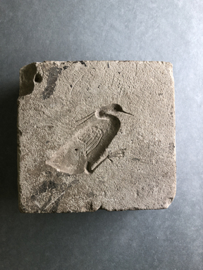 <em>Mold for Making Benu Bird</em>. Limestone, 5 1/16 × 4 13/16 × 1 5/8 in. (12.8 × 12.3 × 4.2 cm). Brooklyn Museum, Charles Edwin Wilbour Fund, 37.1536E. Creative Commons-BY (Photo: , CUR.37.1536E_view01.jpg)
