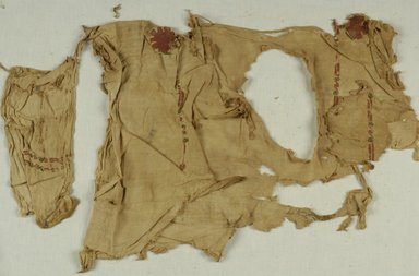 Coptic. <em>Tunic with Botanical Decoration</em>, 5th-7th century C.E. Linen, wool, 19 x 28 in. (48.3 x 71.1 cm). Brooklyn Museum, Charles Edwin Wilbour Fund, 37.2003E. Creative Commons-BY (Photo: Brooklyn Museum (in collaboration with Index of Christian Art, Princeton University), CUR.37.2003E_ICA.jpg)
