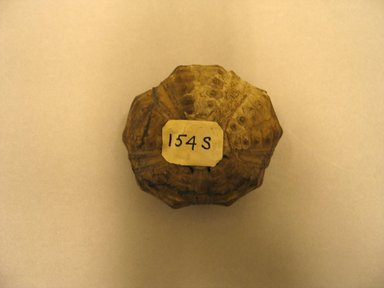 <em>Petrified Sea Urchin</em>. Animal remains, 1 1/8 x Diam. 2 1/16 in. (2.8 x 5.2 cm). Brooklyn Museum, Charles Edwin Wilbour Fund, 37.2042.6E. Creative Commons-BY (Photo: Brooklyn Museum, CUR.37.2042.6E_view1.jpg)