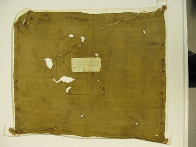 Chimú. <em>Mantle or undetermined, possible Shawl</em>, 1000-1532. Cotton, feathers, 30 11/16 x 36 5/8 in. (78 x 93 cm). Brooklyn Museum, Frank Sherman Benson Fund and the Henry L. Batterman Fund, 37.2906PA. Creative Commons-BY (Photo: Brooklyn Museum, CUR.37.2906PA.jpg)