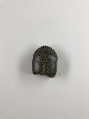 <em>Heart Scarab</em>, ca. 1539-712 B.C.E. Stone, 3/4 × 1 1/4 × 1 7/16 in. (1.9 × 3.1 × 3.7 cm). Brooklyn Museum, Charles Edwin Wilbour Fund, 37.869E. Creative Commons-BY (Photo: , CUR.37.869E_view01.jpg)