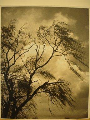Dr. Drahomir Josef Ruzicka (American, born Czech Republic, 1870-1960). <em>April Winds and Showers</em>. Photograph, 11 × 14 in. (27.9 × 35.6 cm). Brooklyn Museum, Gift of the artist, 41.448 (Photo: Brooklyn Museum, CUR.41.448.jpg)
