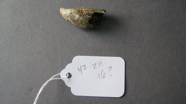 Marquesan. <em>Ornament</em>, before 1938. Bone, 9/16 x 1 5/16 in. (1.5 x 3.3 cm). Brooklyn Museum, A. Augustus Healy Fund, 42.211.16. Creative Commons-BY (Photo: Brooklyn Museum, CUR.42.211.16.jpg)